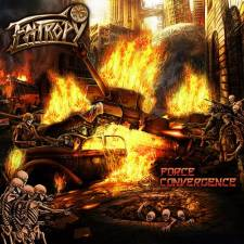 Entropy - Force Convergence