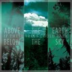 If These Trees Could Talk - Above The Earth, Below The Sky (re-release)