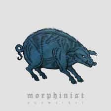 Review: Morphinist - Sunwalker
