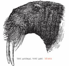 Sumer - The Animal You Are