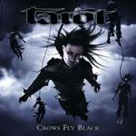 Tarot - Crows Fly Black
