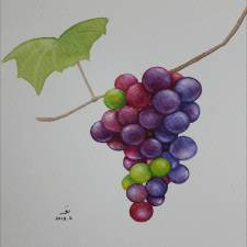 TheGrapes - The Grapes